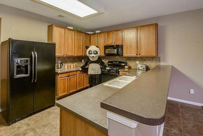 panda-huis-5